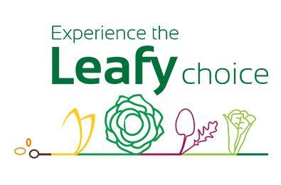 Leafy_main_image